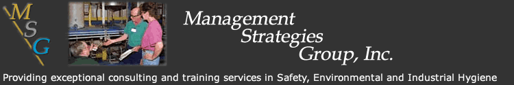 Management Strategies Group Inc. Logo and name